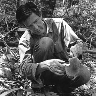 le compositeur et micologue américain John Cage photographié par William Gedney