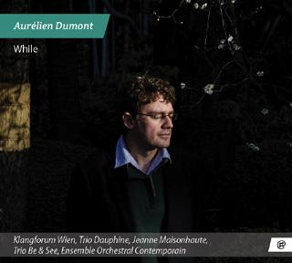 monographie Aurélien Dumont regroupant cinq œuvres variées (2011-2014)