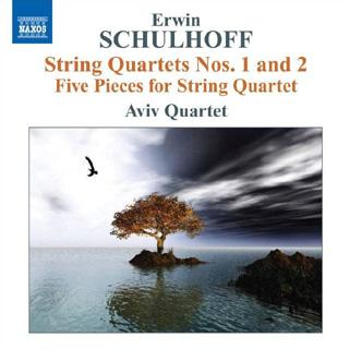 Le Quatuor Avi joue Ervín Šulhov