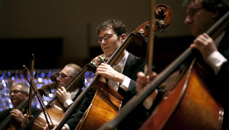 les contrebasses de l'Orchestre national d'Île-de-France