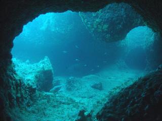 Fond marin photographié par Jacques Collina-Girard